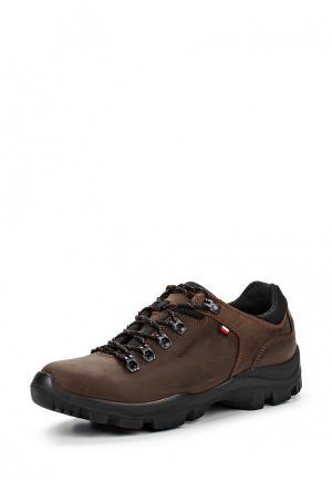 Ботинки Wojas. Цвет: коричневый