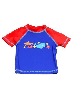 Футболка пляжная Акулята Little Me. Цвет: синий, красный