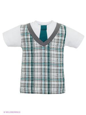 Футболка Лео. Цвет: белый, зеленый, серый, голубой