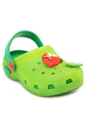 Пантолеты купальные Angry Birds. Цвет: зеленый