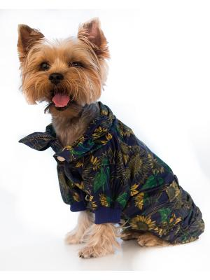 Дождевик Doggy Style. Цвет: синий
