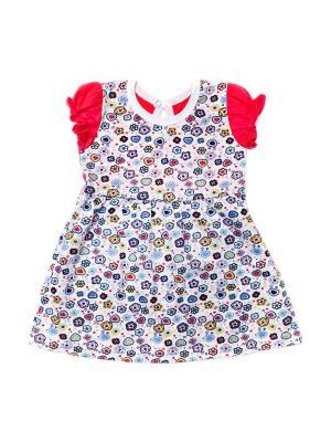 Платье кулирка КиСса