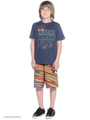 Шорты LACE STRIPE BY DC Shoes. Цвет: оранжевый, черный, голубой