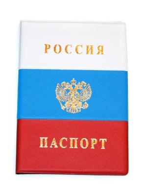 Обложка на паспорт Lola. Цвет: синий, красный, белый