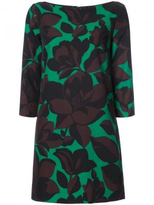 Macro floral print dress Milly. Цвет: зелёный