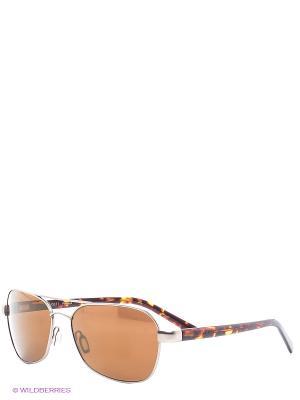 Солнцезащитные очки Serengeti. Цвет: коричневый, оранжевый
