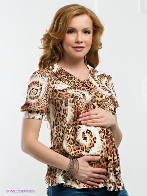 Блузка Nuova Vita. Цвет: коричневый, бежевый
