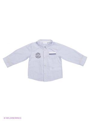 Рубашка CHICCO. Цвет: светло-голубой