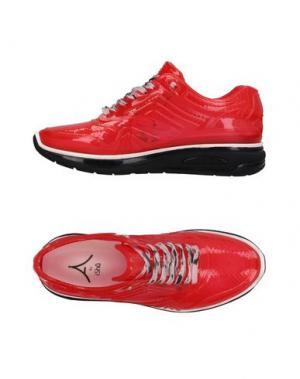 Низкие кеды и кроссовки ISHU+. Цвет: красный