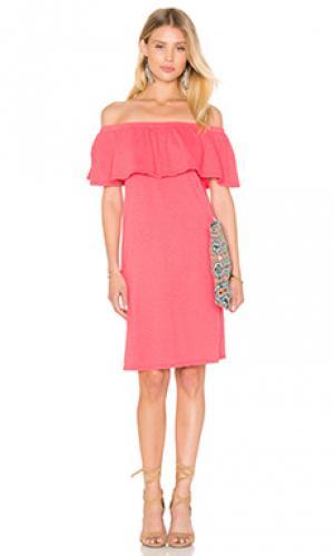 Платье ithaca Velvet by Graham & Spencer. Цвет: розовый