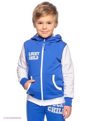 Толстовка Lucky Child. Цвет: синий, белый