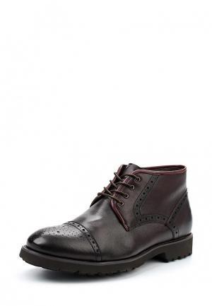 Ботинки классические Dino Ricci. Цвет: бордовый