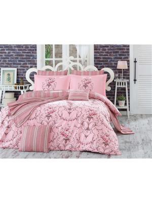 Кпб 1,5 сп. (Евро) поплин ORNELLA, розовый HOBBY HOME COLLECTION. Цвет: розовый