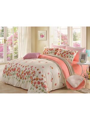 Комплект постельного белья, Клариса, Семейный KAZANOV.A.. Цвет: молочный, персиковый