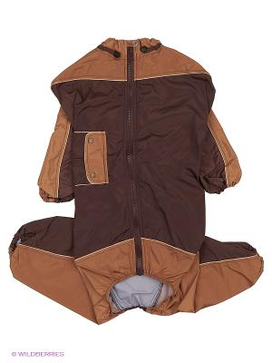 Дождевик холодный (Далматин), мальчик ТУЗИК. Цвет: коричневый