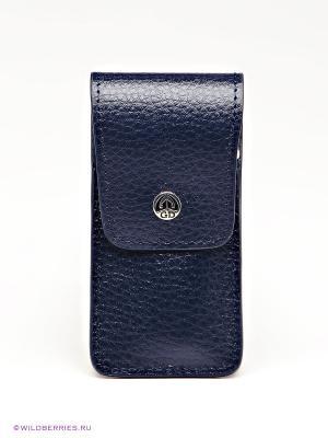 Маникюрный набор GD. Цвет: синий, серебристый