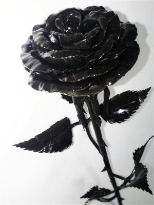 Роза Chic a loco. Цвет: черный