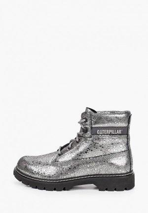 Ботинки Caterpillar LYRIC. Цвет: серебряный