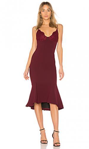 Платье-майка NICHOLAS. Цвет: красное вино