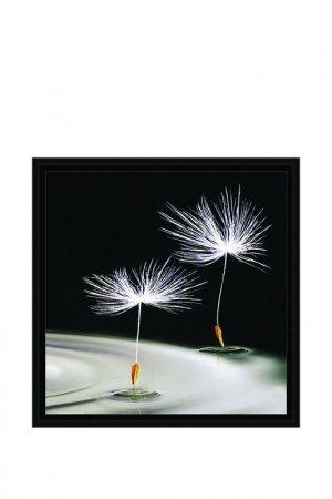 Картина-репродукция Декарт. Цвет: черный, белый, серый