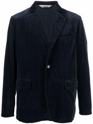Вельветовый пиджак Aspesi. Цвет: синий