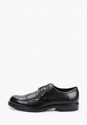 Туфли Ecco BIOM 2GO. Цвет: черный