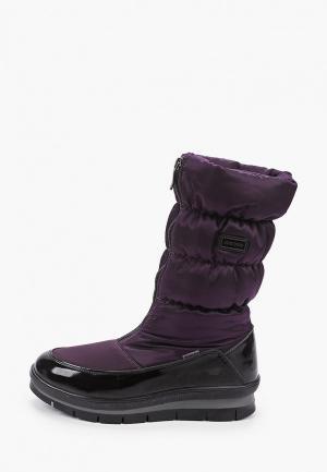 Дутики Jog Dog. Цвет: фиолетовый