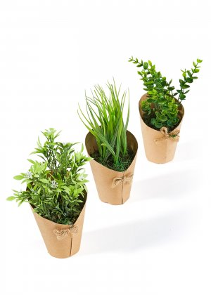 Растения искусственные Рига (3 шт.) bonprix. Цвет: зеленый