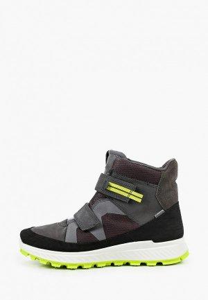Ботинки Ecco EXOSTRIKE KIDS. Цвет: серый