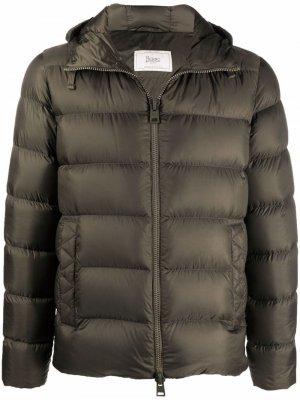 Куртка-пуховик Herno. Цвет: зеленый