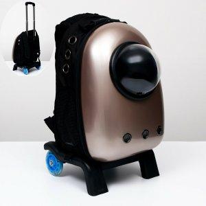 Рюкзак с подставкой, телескопической ручкой и окном для обзора, 32 х 26 53 см, золотистый 697157 Пижон