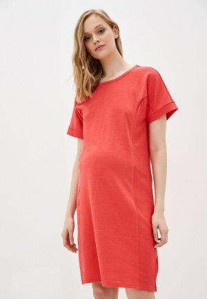 Платье Gap Maternity. Цвет: коралловый