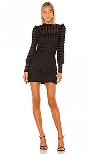 Мини платье alessandra Bailey 44. Цвет: черный