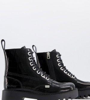 Эксклюзивные лакированные ботинки черного цвета с крокодиловым принтом Kizzie-Черный цвет Kickers