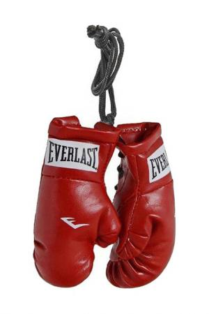 Брелок Mini Boxing Glove EVERLAST. Цвет: красный