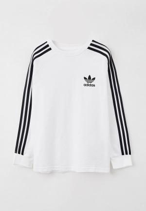 Лонгслив adidas Originals. Цвет: белый