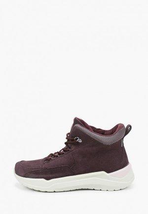 Ботинки Ecco INTERVENE. Цвет: фиолетовый
