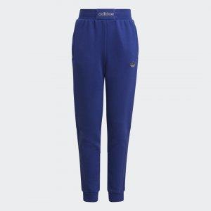 Брюки SPRT adidas. Цвет: синий
