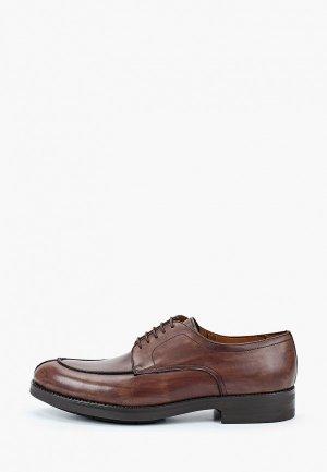 Туфли Umber. Цвет: коричневый