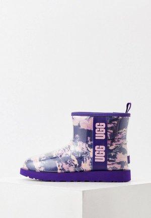 Угги UGG. Цвет: фиолетовый