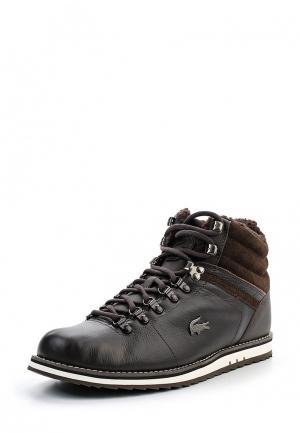 Ботинки Lacoste JARMUND PUT. Цвет: коричневый
