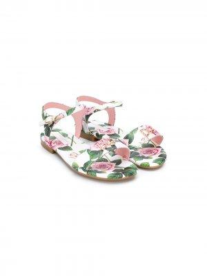 Декорированные сандалии с принтом Dolce & Gabbana Kids. Цвет: белый