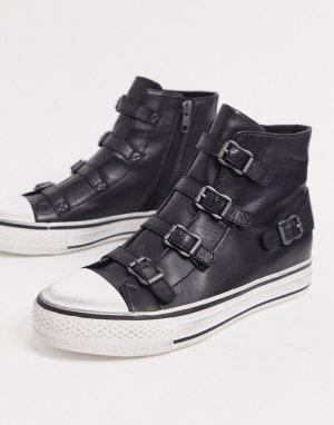 Черные высокие кроссовки с пряжками Virgin-Черный Ash