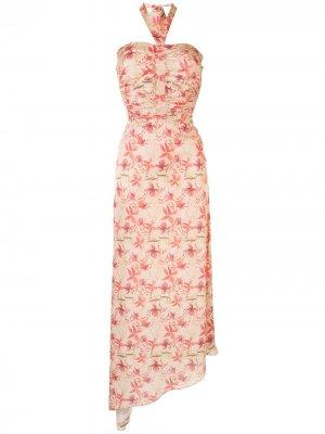 Платье с вырезом халтер и принтом Alexis. Цвет: розовый