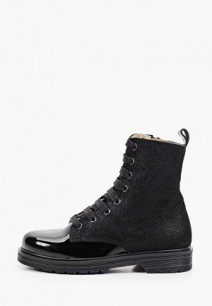 Ботинки Petasil. Цвет: черный