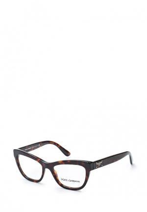 Оправа Dolce&Gabbana DG3253 502. Цвет: коричневый