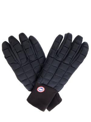 Пуховые перчатки Northern Canada Goose. Цвет: черный