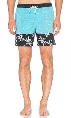Пляжные шорты shangri Globe. Цвет: бирюзовый