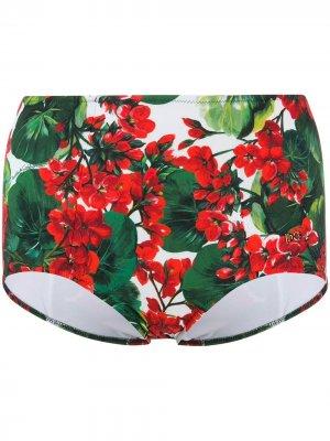 Плавки бикини с цветочным принтом Dolce & Gabbana. Цвет: зеленый