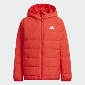 Куртка Frosty Winter Sportswear adidas. Цвет: красный